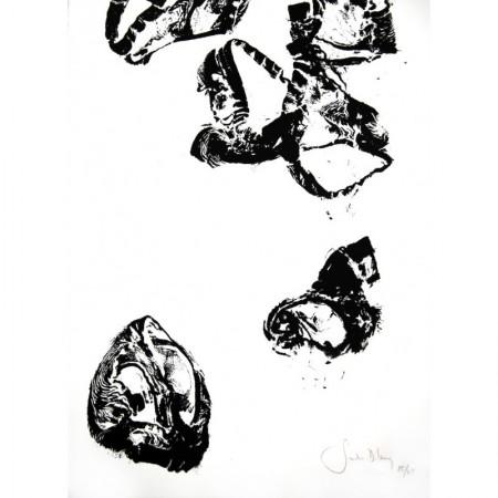 """Flying briefs"", Sandra D. Lecoq"