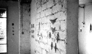1975 exposition viallat saint pancrace